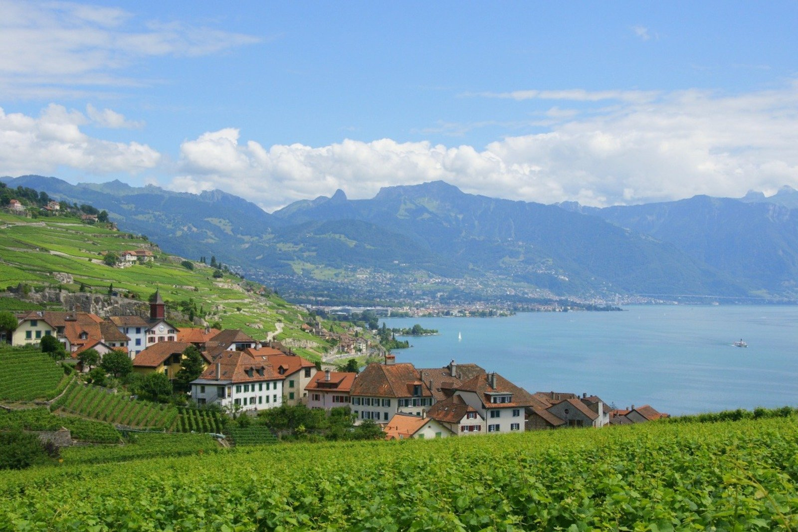 Vineyards of Lavaux